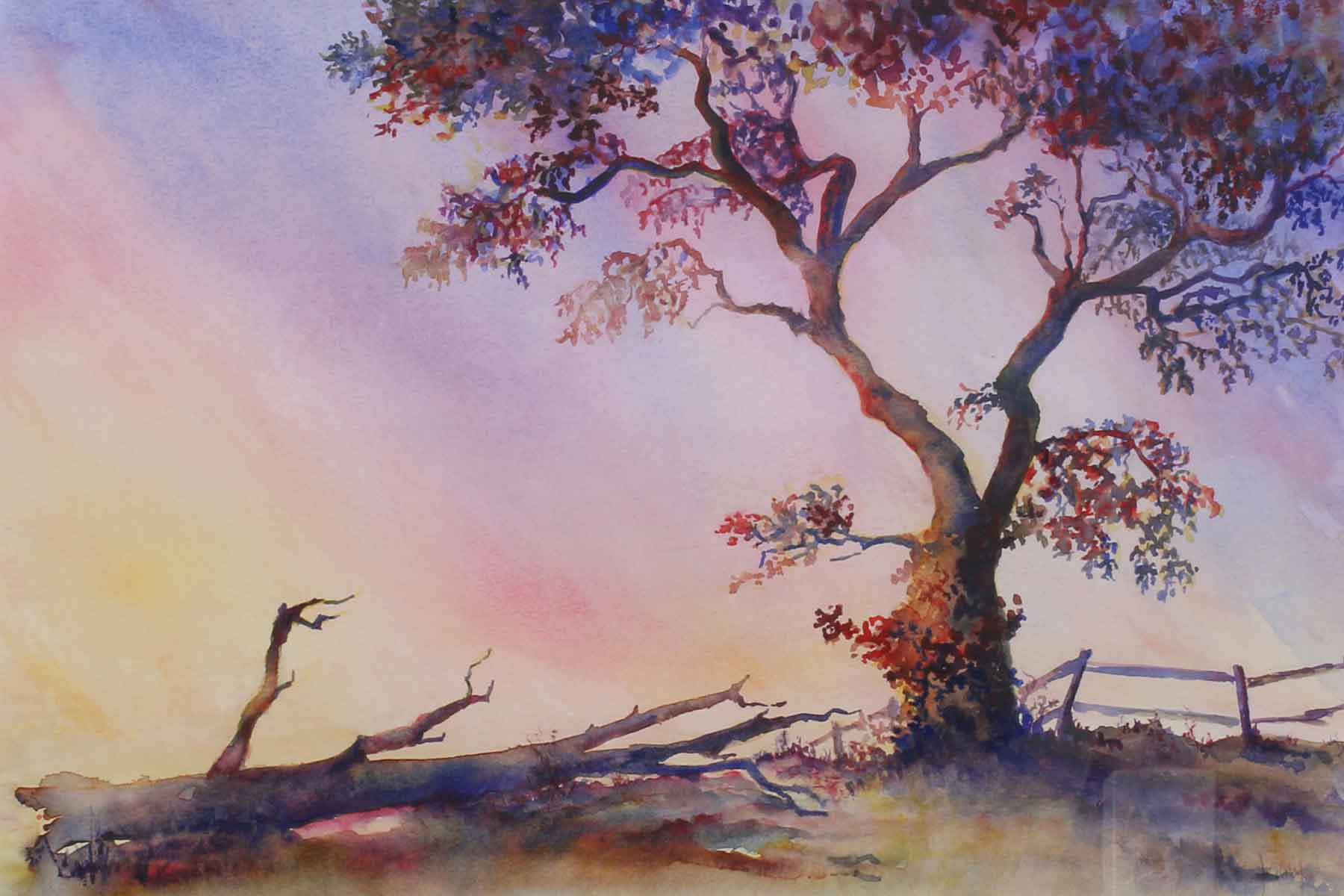 Jenny Brown - The Lone Tree